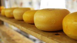 queso al meson